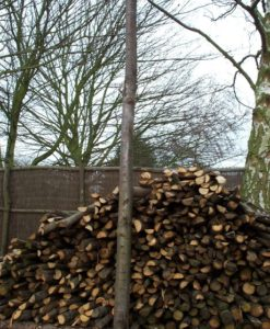 8ft Chestnut Post
