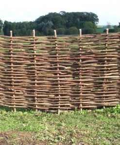 Hazel Hurdle 6ft x 3ft