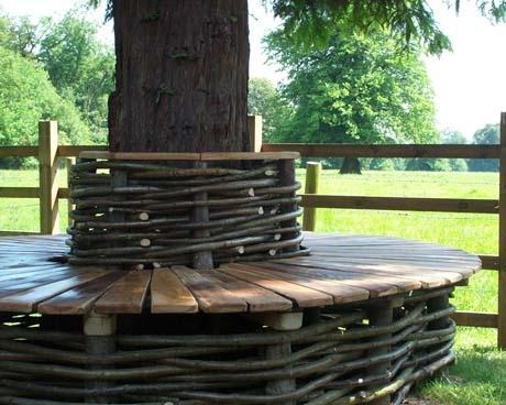 Oak & Hazel Tree Seat