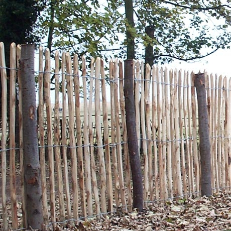 Chestnut Pailing - Bespoke